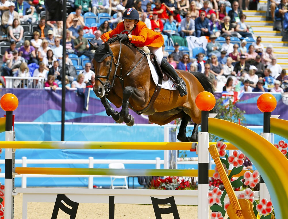 verdi, team nijhof, stallions, jumping, hengsten