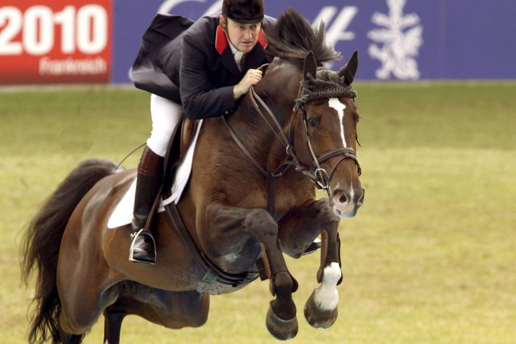 diepvries, ixci, heartbreaker, stallion, hengst, hengstenhouder, team nijhof