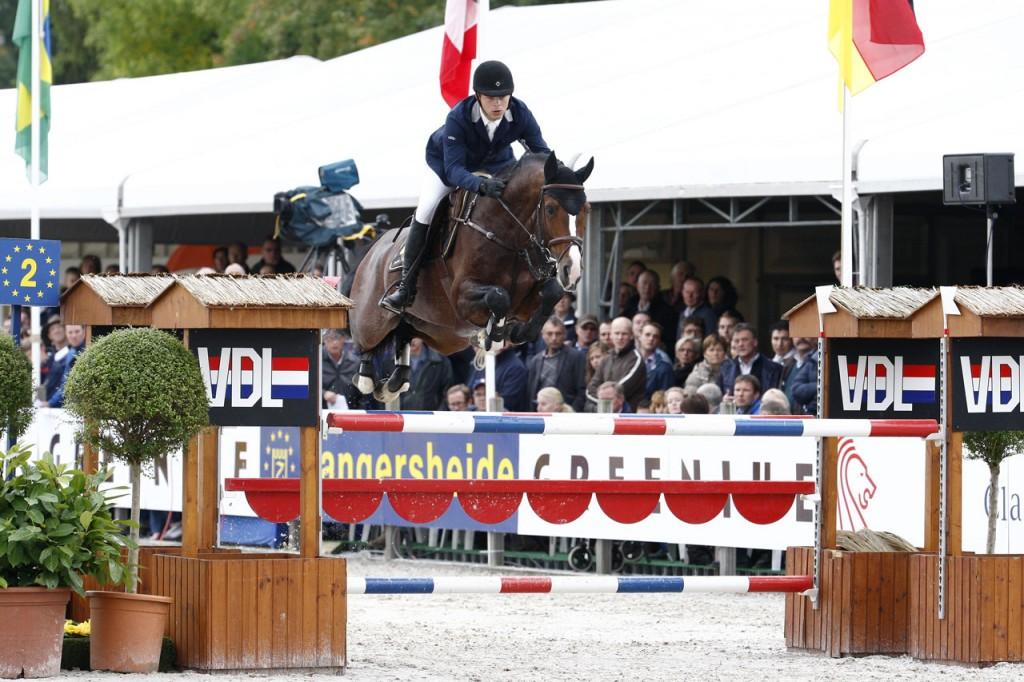 hengst, stallion, zambesi, team nijhof, hengstenhouder