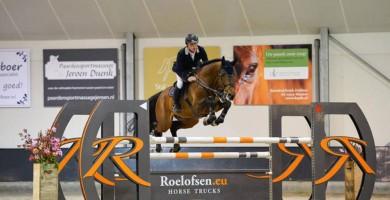 eldorado, stallion, hengsten, jumping, team nijhof