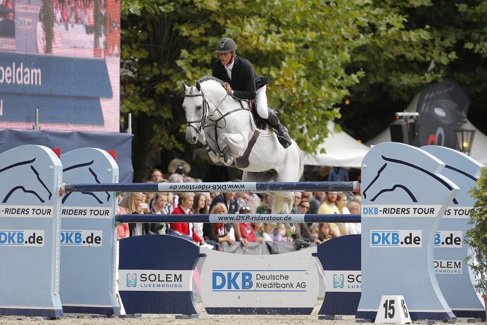 quality time, hengst, stallions team nijhof, jumping, jeroen dubbeldam