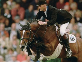 heartbreaker, hengsten, stallions, jumping, team nijhof