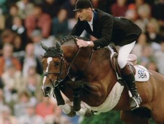 heartbreaker, hengst, stallion, hengstenhouderij, team nijhof