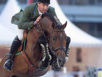 hengst, stallion, team nijhof, hengstenhouder, fokkerij