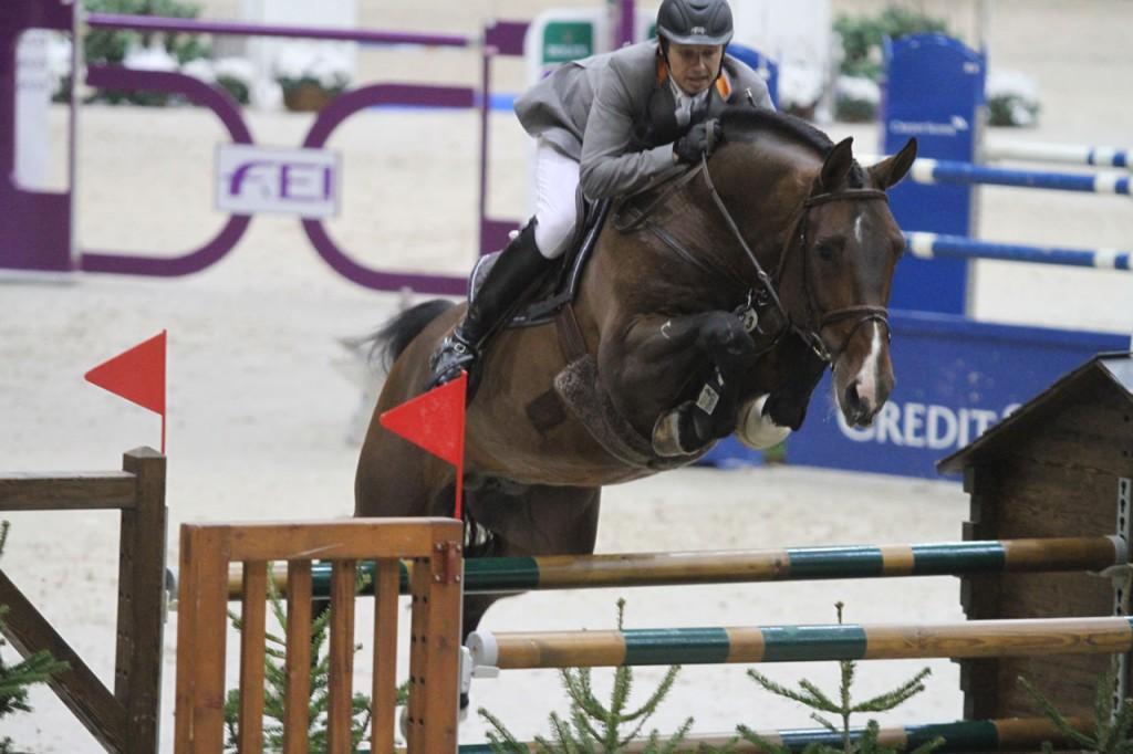 spartacus, marco kutscher, team nijhof, hengst, stallion