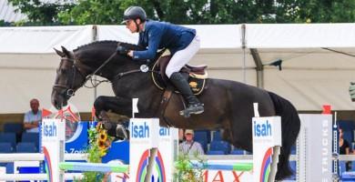 starpower, hengsten, stallion, team nijhof