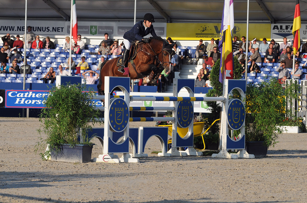 team nijhof, hengst, stallion, team nijhof