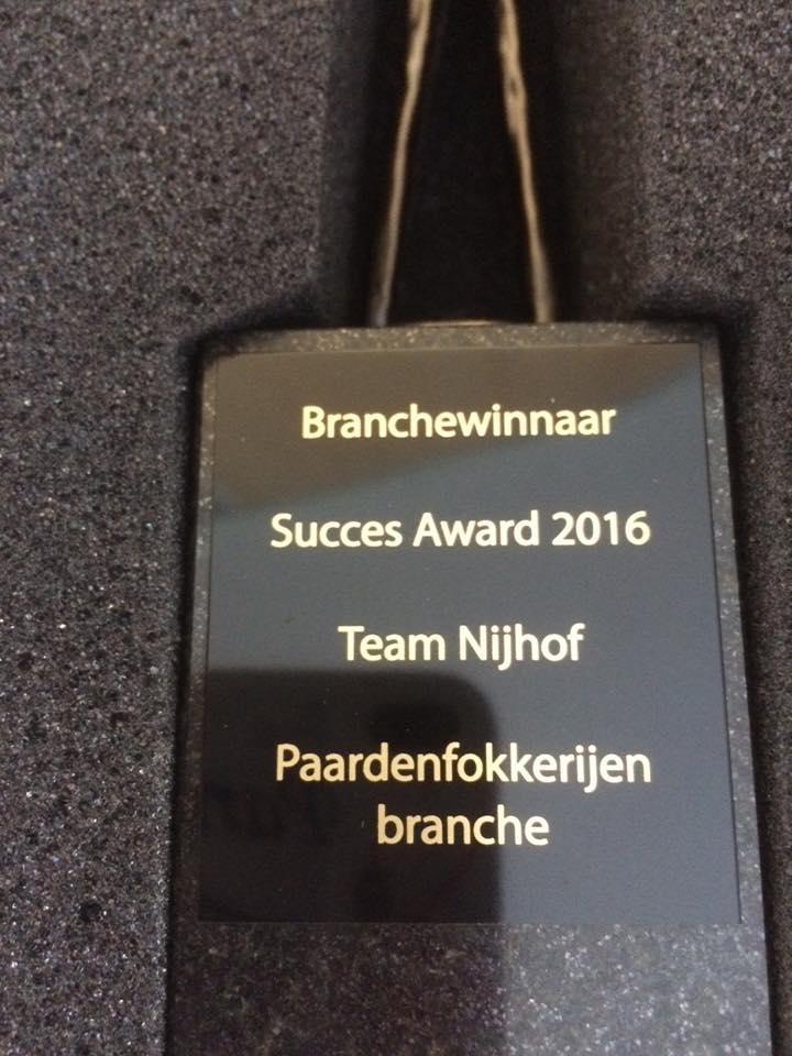 succes.award. 2016(2)
