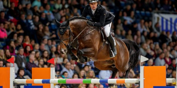 Grandorado TN wint Hengsten Grand Prix VHO Den Bosch; Highway M TN 2e