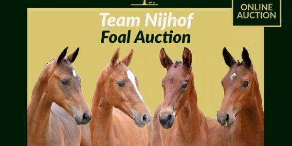 Team Nijhof Talent Sale